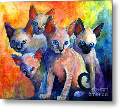 Devon Rex Kitten Cats Metal Print