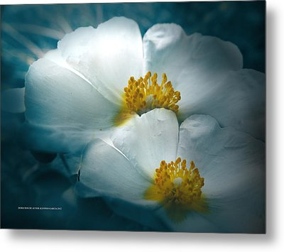 Metal Print featuring the photograph Dia Nublado by Alfonso Garcia