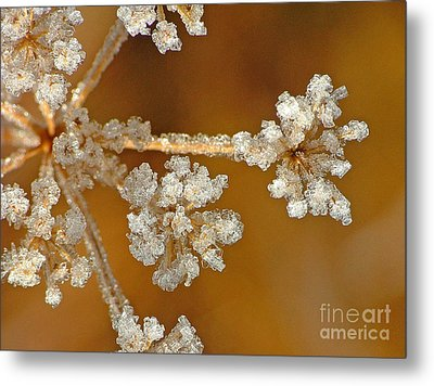 Diamond Ice Metal Print
