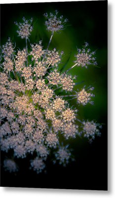 Diamonds Are Forever Metal Print by Loriental Photography