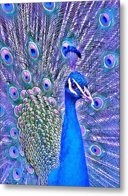 Did You Put Artificial Colors In My Food Metal Print by Margaret Bobb