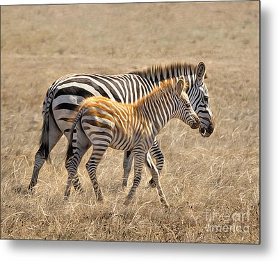 Different Stripes Metal Print