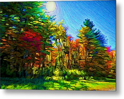 Sunny Afternoon Metal Print by Lilia D