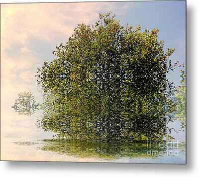 Dimensional Metal Print by Elfriede Fulda
