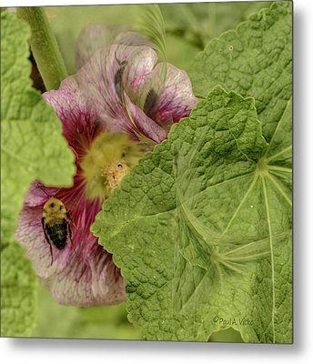 Dimensions Of Bees_flowers Metal Print