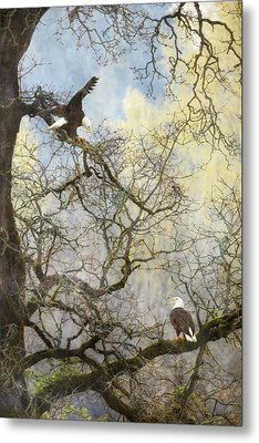 Metal Print featuring the photograph Dining In The Canopy by Angie Vogel