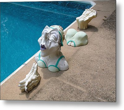 Dipping Dolly Metal Print by William Thomas