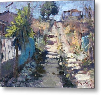 Dirt Road At Kostas Garden Metal Print by Ylli Haruni