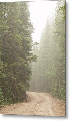 Dirt Road Challenge Into The Mist Metal Print
