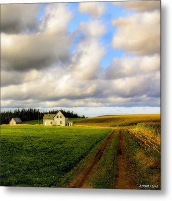 Dirt Road To Old Homestead, Mabou Ridge Metal Print by Ken Morris