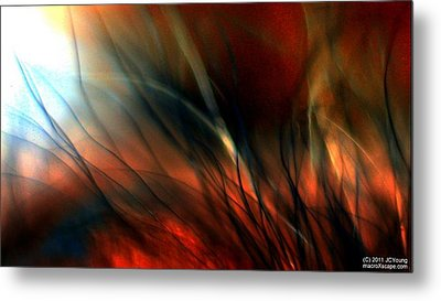 Distant Fire Metal Print by JCYoung MacroXscape