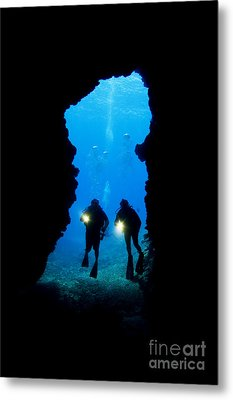 Divers Silhouetted Through Reef Metal Print by Dave Fleetham - Printscapes