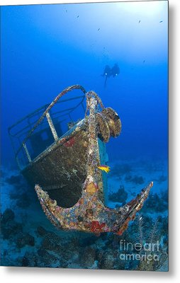 Divers Visit The Pelicano Shipwreck Metal Print by Karen Doody