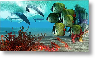 Diving Whales Metal Print by Corey Ford