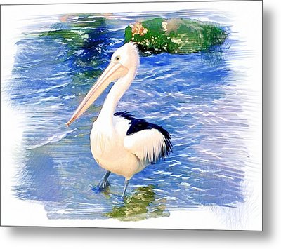Metal Print featuring the photograph Do-00088 Pelican by Digital Oil