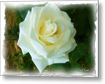Metal Print featuring the photograph Do-00300 La Rose De Aaraya by Digital Oil