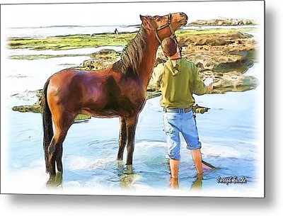 Metal Print featuring the photograph Do-00421 Washing Horse In Mina by Digital Oil