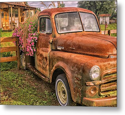 Dodge Flower Pot Metal Print