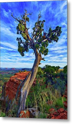 Doe Mountain Juniper Metal Print