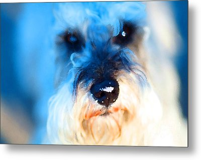 Dog 2 . Photo Artwork Metal Print by Wingsdomain Art and Photography