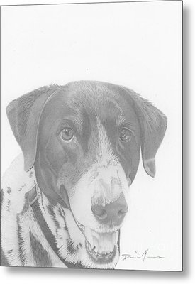 Dog Drawing Orion Metal Print