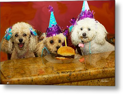 Dog Party Metal Print by Diana Haronis