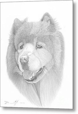 Dog Portrait Logi Metal Print