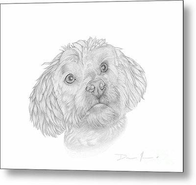 Dog Portrait Marsh Mellow Metal Print
