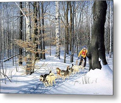 Dog-sled Racing Metal Print by Conrad Mieschke