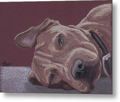 Dog Tired Metal Print by Stacey Jasmin