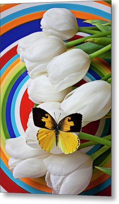 Dogface Butterfly On White Tulips Metal Print by Garry Gay