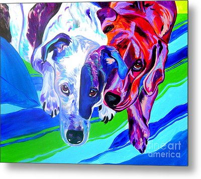 Dogs - Tango And Marley Metal Print by Alicia VanNoy Call