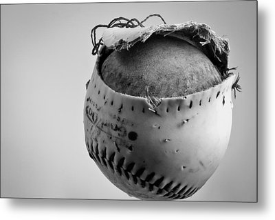 Dog's Ball Metal Print by Bob Orsillo
