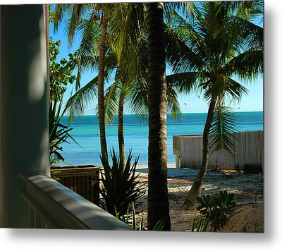 Dog's Beach Key West Fl Metal Print by Susanne Van Hulst
