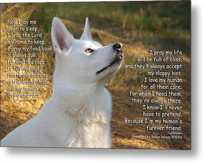 Dog's Prayer Now I Lay Me Down To Sleep Metal Print by Robyn Stacey