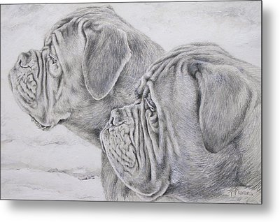 Dogue De Bordeaux Metal Print by Keran Sunaski Gilmore