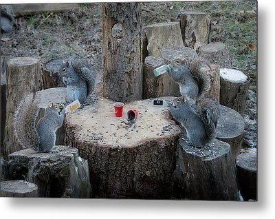 Doing Some Drinking On The Log Metal Print by Dan Friend