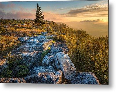 Monongahela National Forset Dolly Sods Wilderness Metal Print by Rick Dunnuck
