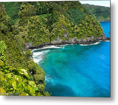 Metal Print featuring the photograph Dolphin Cove by Debbie Karnes