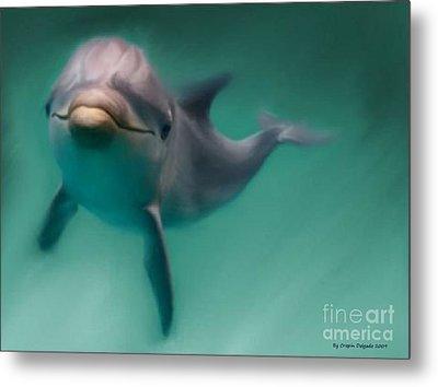 Dolphin  Metal Print by Crispin  Delgado