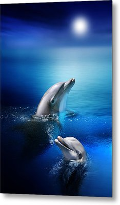Dolphin Delight Metal Print by Julie L Hoddinott