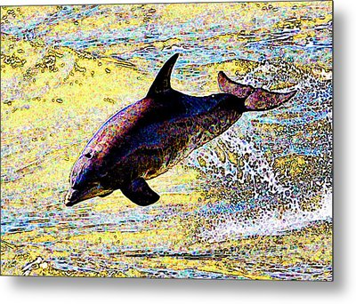 Metal Print featuring the photograph Dolphin by John Collins