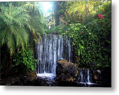 Metal Print featuring the photograph Dominica by Denise Moore