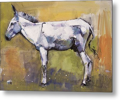 Donkey Stallion, Ronda Metal Print by Mark Adlington