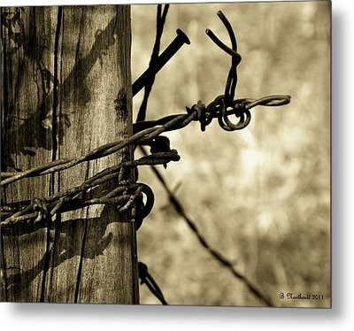 Don't Fence Me In 2 Metal Print