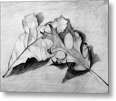 Metal Print featuring the drawing Don't Leaf Me by Jean Haynes