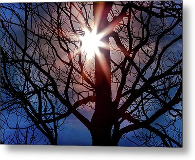 Don't Lose Sight Of It All Metal Print by Karen Wiles