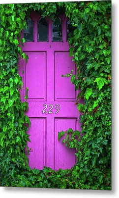 Door 229 Metal Print by Darren White