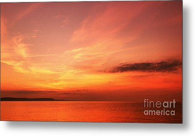 Metal Print featuring the photograph Dorset Delight by Baggieoldboy