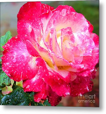 Metal Print featuring the photograph Double Delight by Patricia Griffin Brett